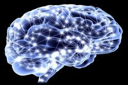انتقال سلول های بنیادی با کمک و هدایت ام ار ای به مغز