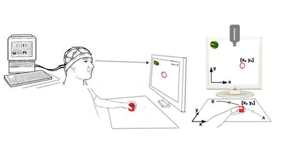 گام مهم محققان برای بهبودی بیماران سکته مغزی/ رصد مغز در دو محیط