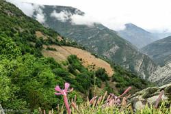 راهاندازی نخستین اقامتگاه بوم گردی البرز در روستای «نشترود»