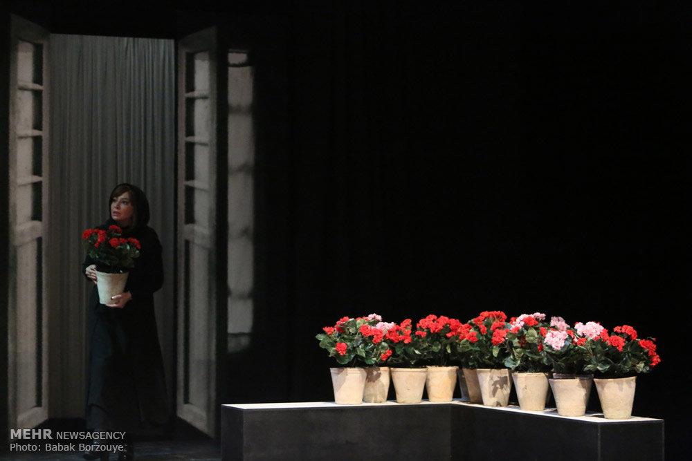 اجرای نمایش خروس میخواند