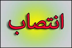 «شفا نظرپور» شهردار پرند شد