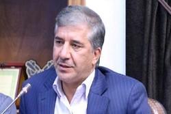 احمد محمدی انارکی