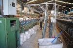 خصوصی سازی کارخانه های زیادی را در مازندران تعطیل کرده است