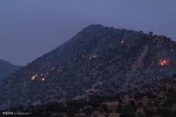 جنگلهای بازیدراز در ۳ نقطه از استان کرمانشاه طعمه حریق شد