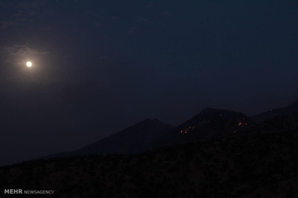 آتش سوزی جنگل های مله کوه شهرستان پلدختر