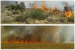 آتشسوزی ارتفاعات بیرمی شهرستان دشتی مهار شد