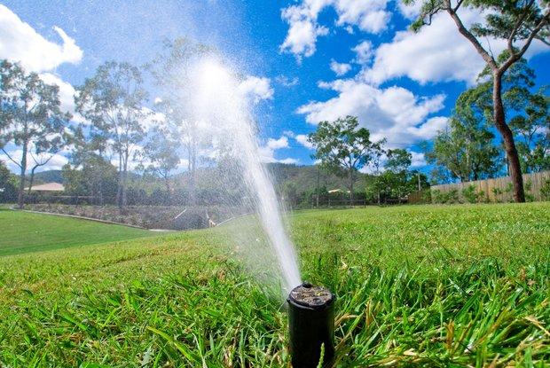 آب در استان بوشهر کیمیا است/ لزوم اصلاح شیوه آبیاری فضای سبز شهری