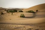 تکیه بر تختگاه سلیمان نبی تا سفر به کویرِ «دور و نزدیک»