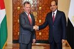 مصر و اردن حل سیاسی بحران سوریه را خواستار شدند