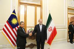 Iranian, Malaysian parliament speakers meet in Tehran