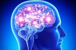 طراحی و ساخت وسیله ای برای درمان تومورهای کوچک در مغز