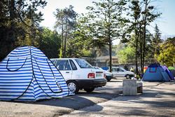 ممنوعیت برپایی چادر و کمپ های جنگلی در گلستان