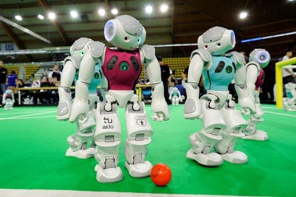 اولین مدرسه تابستانی رباتیک برگزار شد 2187109