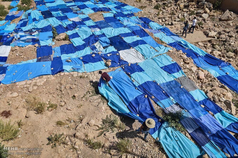 پروژه هنر محیطی  آبیِ بی آب در شیراز