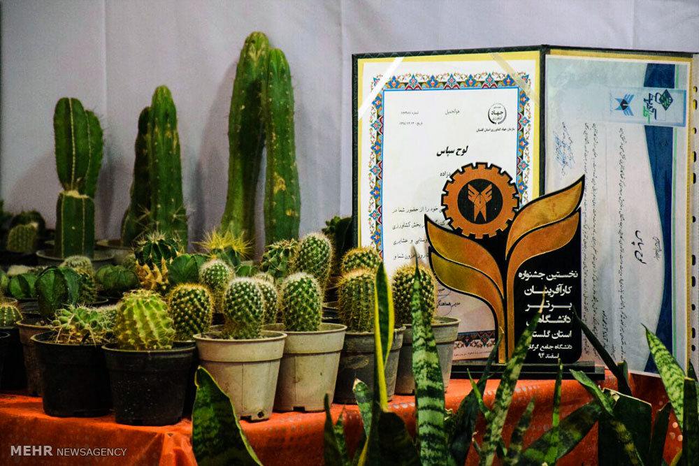 نمایشگاه زنان، توانمندی ها و تولید ملی در گرگان