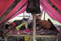 22 ألفا من المسلمين الروهينغيا دخلوا بنغلادش خلال أسبوع