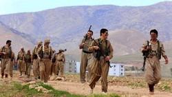Kurdistan Kurd rebel