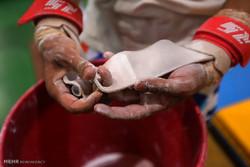 اردوی تیم ملی ژیمناستیک هنری در جزیره کیش