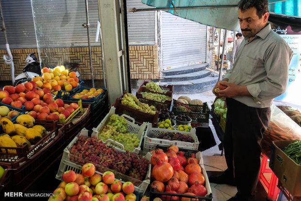 بساط میوههای خارجی برچیده شد/دولت کوتاه نیاید