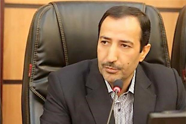 اسناد مربوط به امیرکبیر به کشور بازمیگردد/پیگیری وزارت امورخارجه