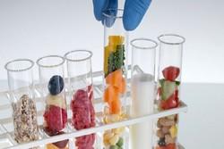 nano packaging