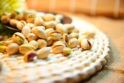 Iran produces carbon active from pistachio shells