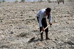 آماده سازی اراضی کشاورزی برای کشت