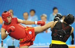 Victories on opener for Iranian Wushu practitioners