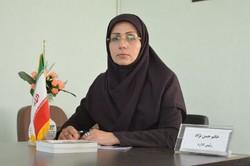 ساماندهی و توسعه تعاونی ها در شهرستان ملارد با جدیت پیگیری می شود