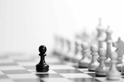 رئیس کمیته داوران فدراسیون شطرنج منصوب شد