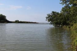 رودخانه پلرود