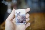 چاپگر جیبی عکس ویژه گوشیهای هوشمند از راه رسید