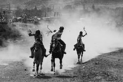 Türkmen atı