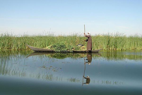 «آب سوخته» روایتی از هورالعظیم