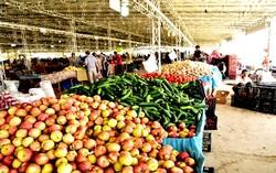 قیمت میوه در قم از شهرهای دیگر ارزانتر است