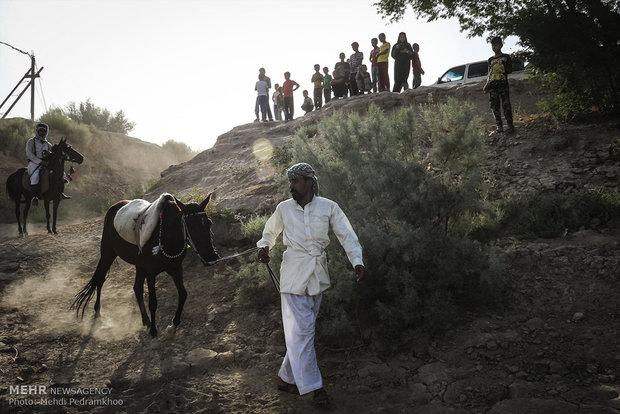 """سباق الخيول المحلية في قرية """"شري مري"""" جنوب ايران"""