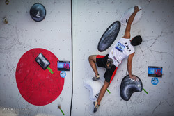 VIDEO: Reza Alipour finishes 1st at IFSC Climbing WCup