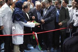 بهره برداری از یک واحد دامداری در شهرستان تاکستان آغاز شد