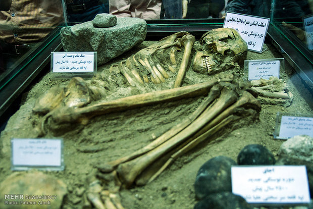 7,500-year-old skeleton unveiled Wed.