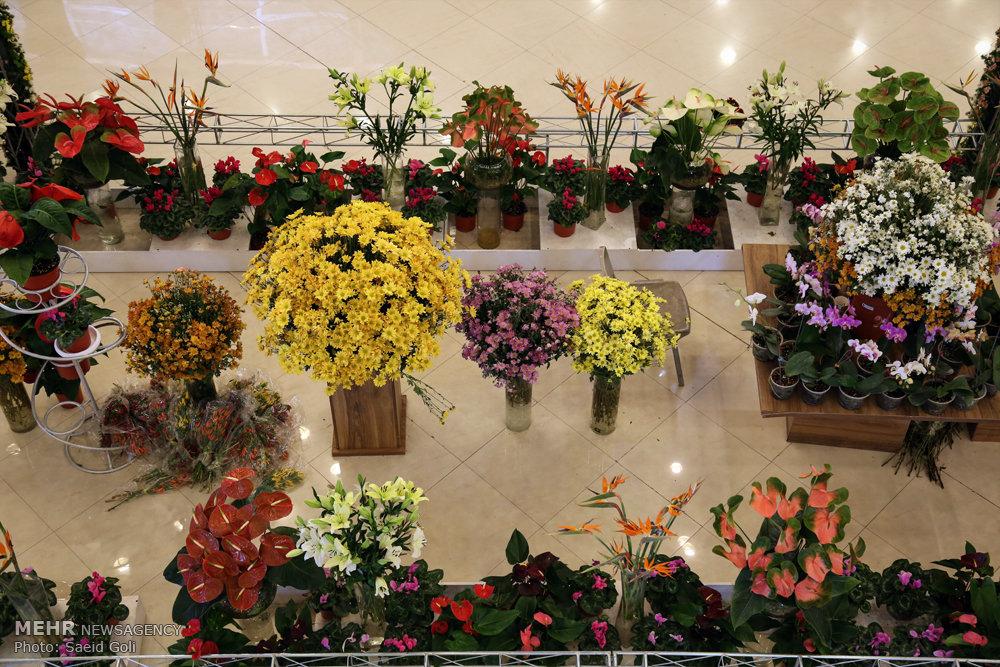 نمایشگاه گل وگیاه
