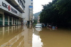خهسارهکانی زریانی مهگی له چین و تایوان