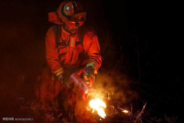 آتش سوزی در کالیفرنیای آمریکا