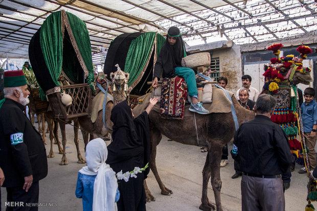 ورود کاروان نمادین امام حسین (ع) به کربلا در شهر سنجان استان مرکزی