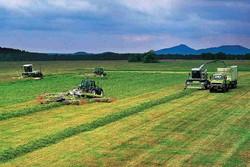 وضعیت کشاورزی در بخش ارم نگرانکننده است