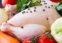 مشارکت مجارستان در توسعه زنجیره تولید و صادرات مرغ