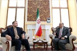 عبداللهيان : التعاون المشترك بين ايران ومصر يساهم في الحد من التوترات الاقليمية