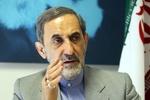 Velayati vows Iran's firm response to ISA