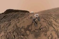 خزنده باستانی/ سلفی جدید از مریخ