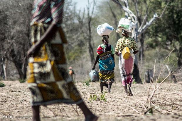 موزمبیق میں ایک گاؤں میں دہشت گردوں کے حملے میں 12 افراد ہلاک