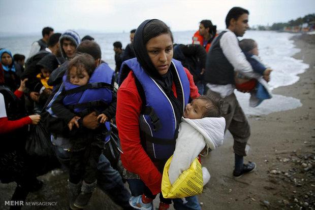 تصاویر برتر از بحران پناهجویان سال 2015